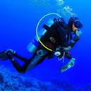 Immersioni nei fondali di Tropea