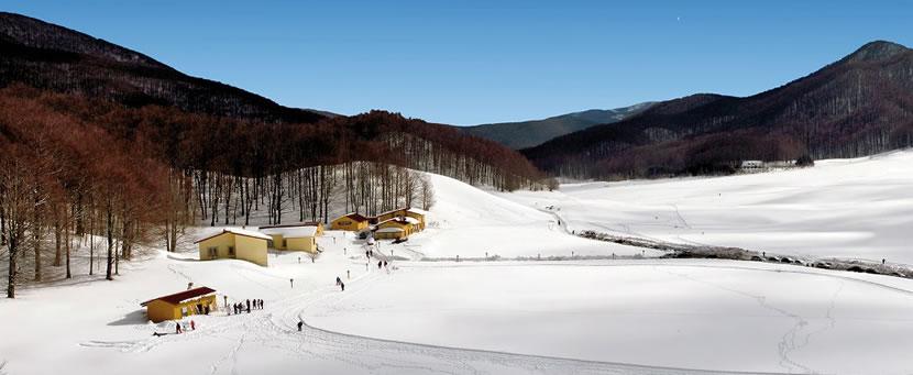 Saracena - Novaccco