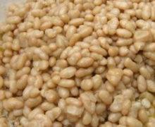 Sujaca (fagioli) di Caria