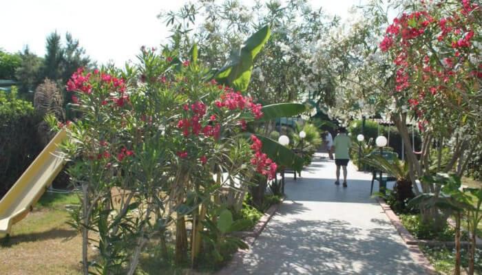 Hotel La Praia di Zambrone - giardini