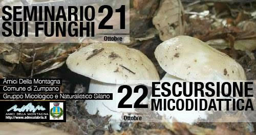 Seminario sui Funghi ed Escursione Micodidattica