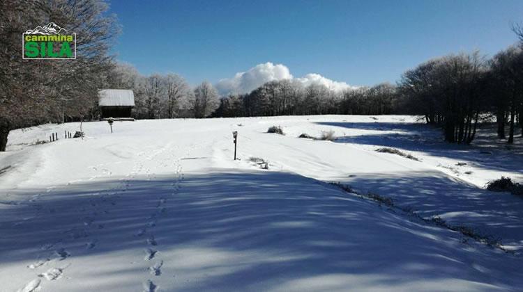 Nevicata sul Monte Botte Donato in Sila, 27 Novembre 2017 - 2
