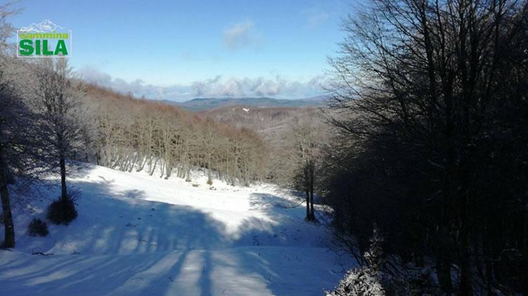 Nevicata sul Monte Botte Donato in Sila, 27 Novembre 2017 - 6