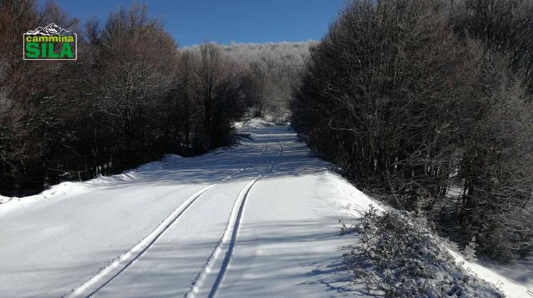 Nevicata sul Monte Botte Donato in Sila, 27 Novembre 2017