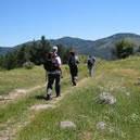 Trekking in Sila