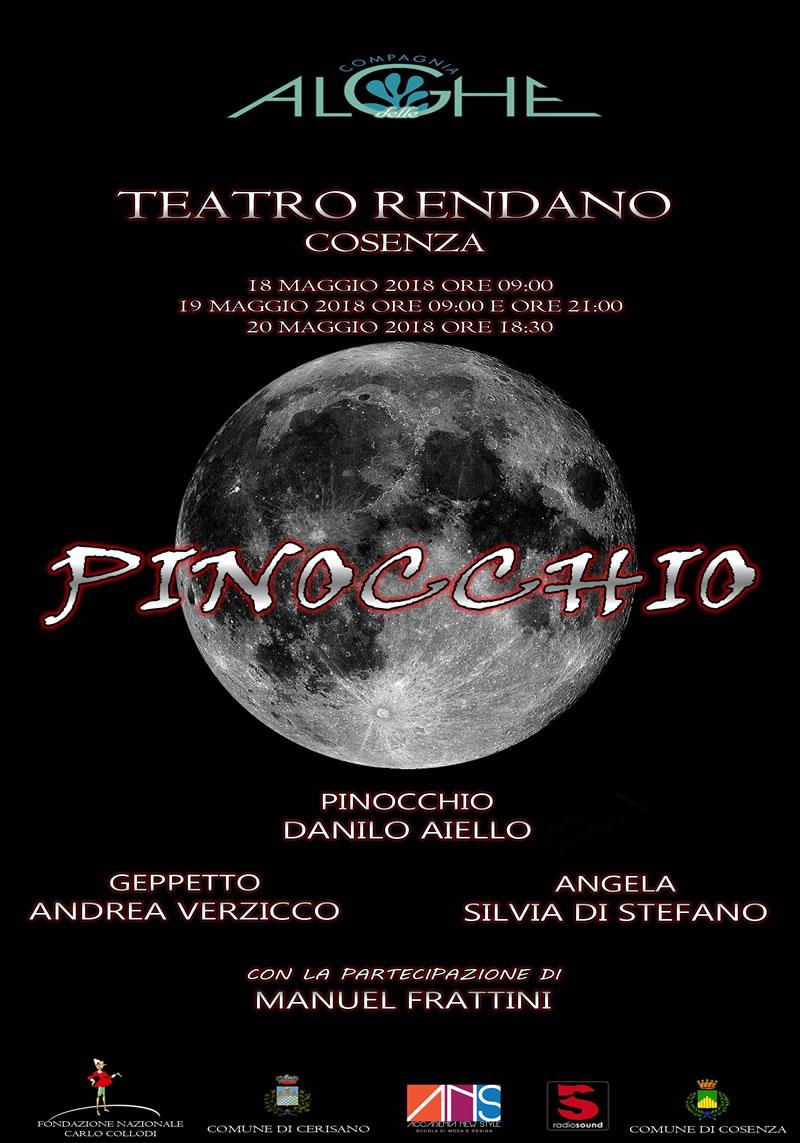 PINOCCHIO MUSICALTOUR 2018 locandina