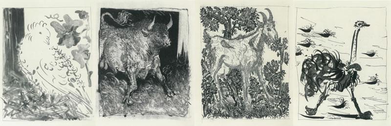 Quattro opere di Pablo Picasso al MACA di Acri