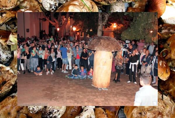 Festa del Fungo a Platania