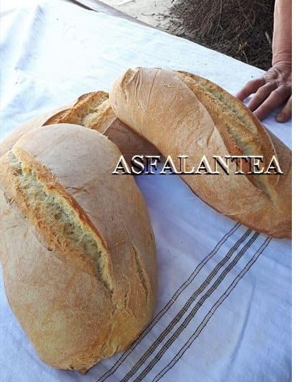 Giornata del Pane a Zungri