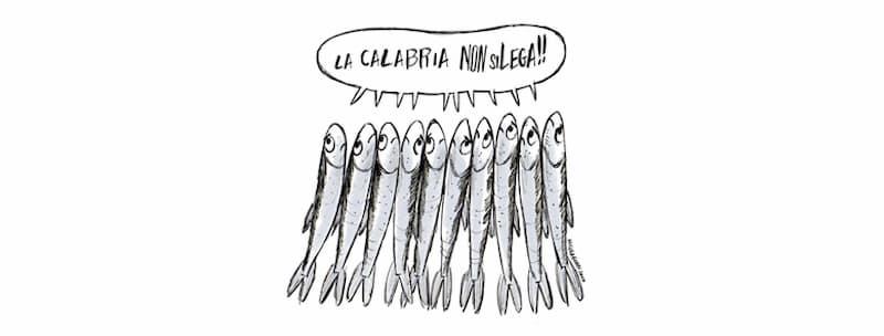 6000 Sardine - La Calabria non si lega