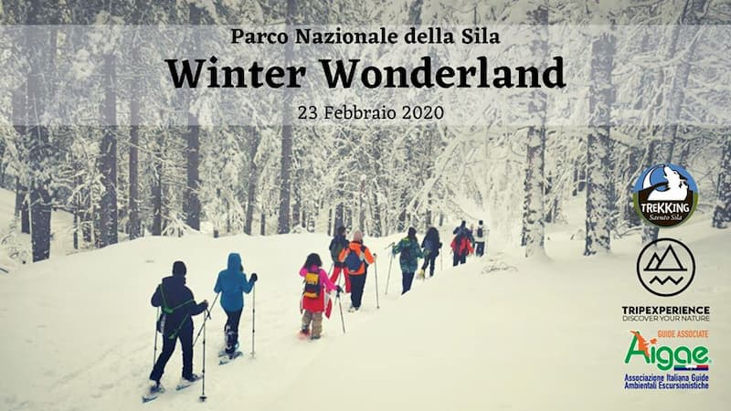 Sila Winter Wonderland 2020