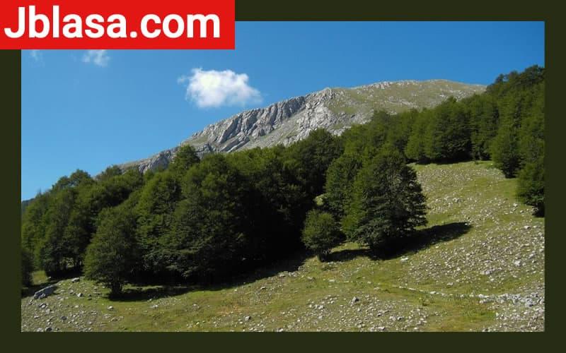 Parco Nazionale del Pollino Calabria