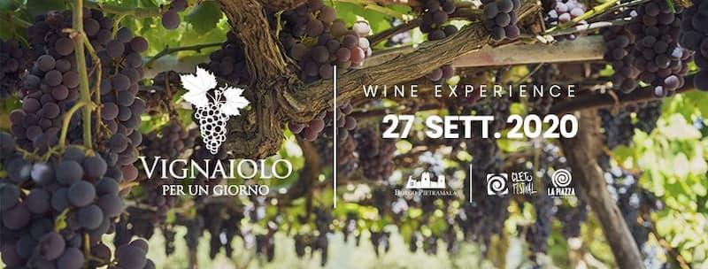 Vignaiolo per un giorno Wine Experience 27 settembre 2020 a Cleto