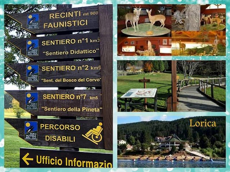 LST to Parco Nazionale della Sila (Cupone + Lorica)