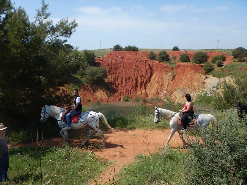 Escursione a Cavallo nel Parco Naturale
