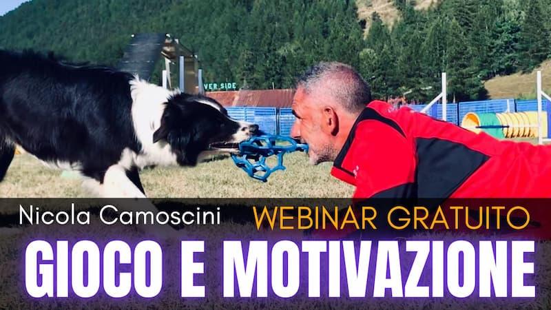 Gioco e Motivazione - WEBINAR GRATUITO