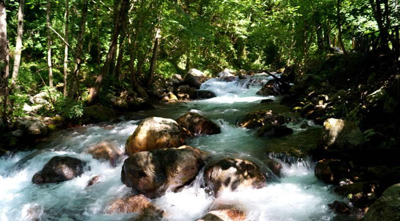 Riserva naturale Valle del Fiume Argentino