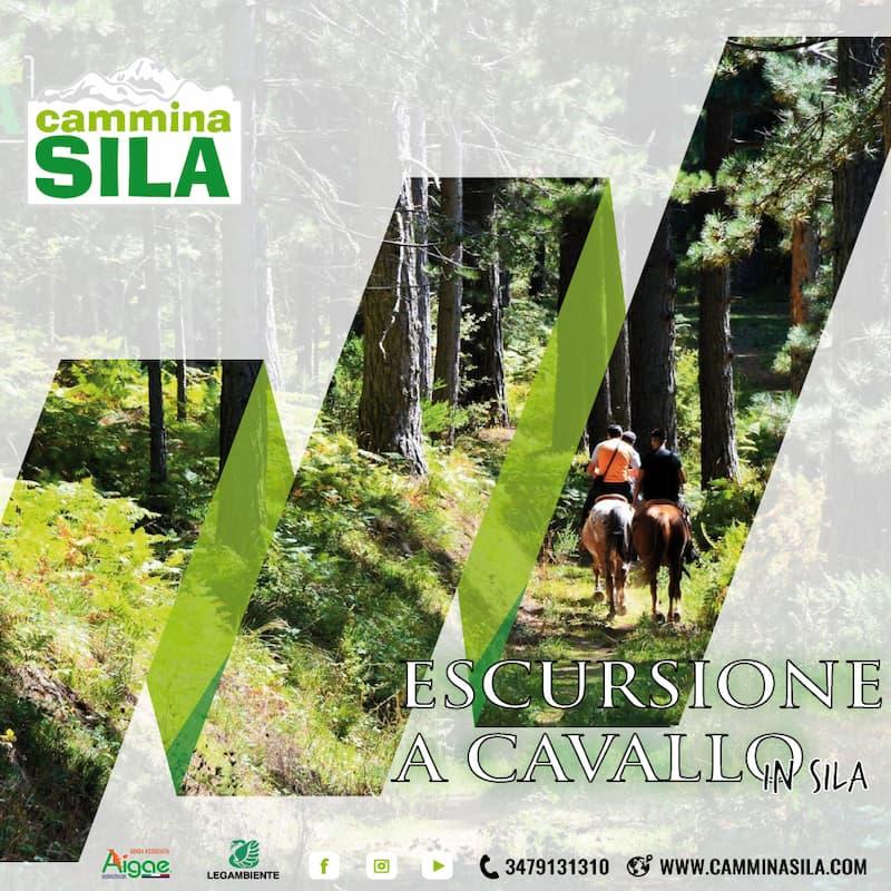 Passeggiata a Cavallo in Sila 2 giugno 2021