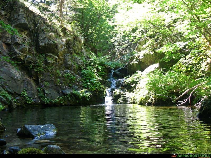 Roccaforte del Greco - Il sentiero dell'acqua