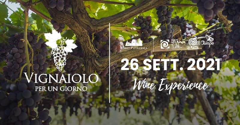 Vignaiolo per un giorno • Wine Experience 26 settembre 2021 Cleto