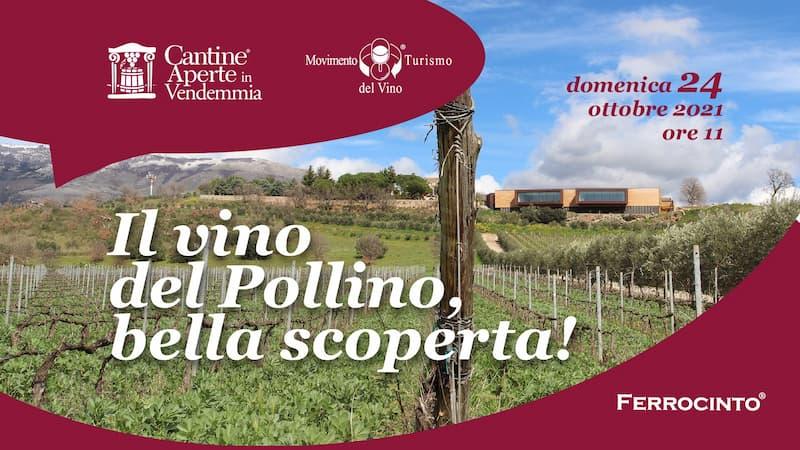 Cantine Aperte in vendemmia Il vino del Pollino, bella scoperta 24 ottobre 2021 Castrovillari