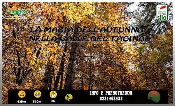 La magia dell'autunno nella valle del Tacina